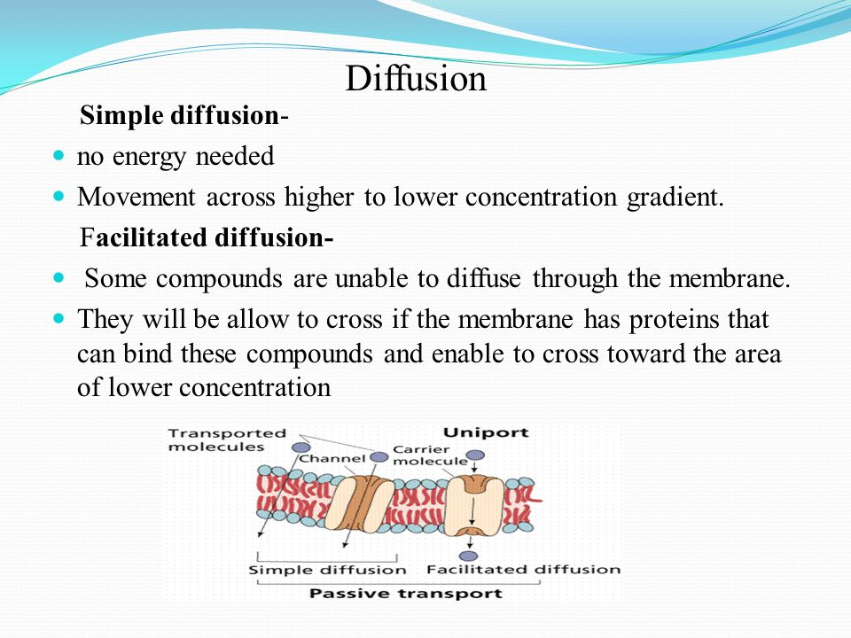 Diffusion Simple diffusion- no energy needed