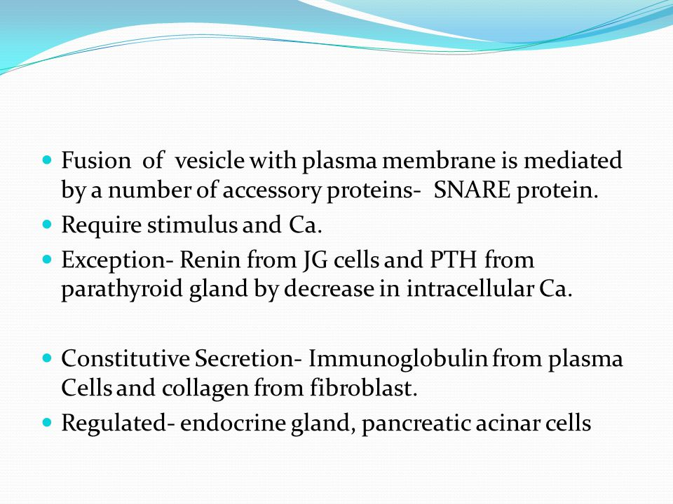 Fusion of vesicle with plasma membrane is mediated by a number of accessory proteins- SNARE protein.