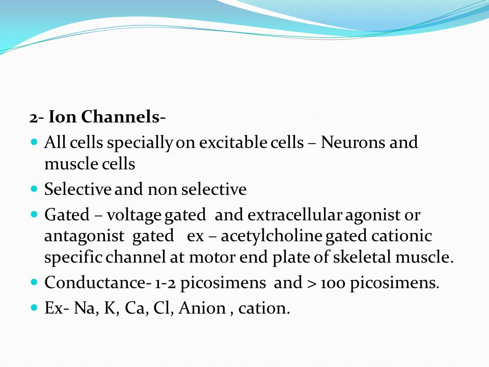 2- Ion Channels- All cells specially on excitable cells – Neurons and muscle cells. Selective and non selective.