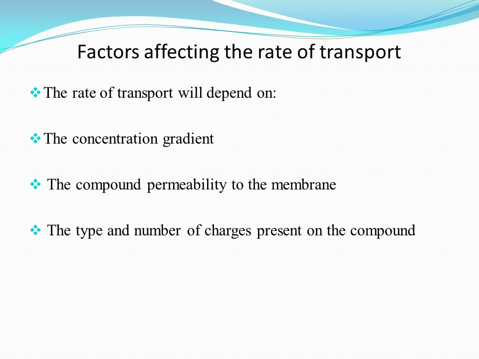 Factors affecting the rate of transport