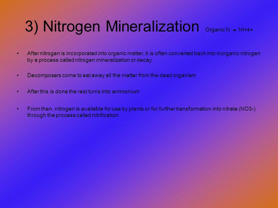 3) Nitrogen Mineralization Organic N NH4+