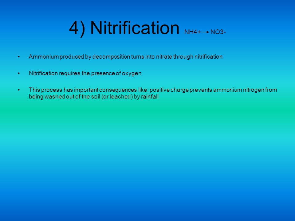 4) Nitrification NH4+ NO3-