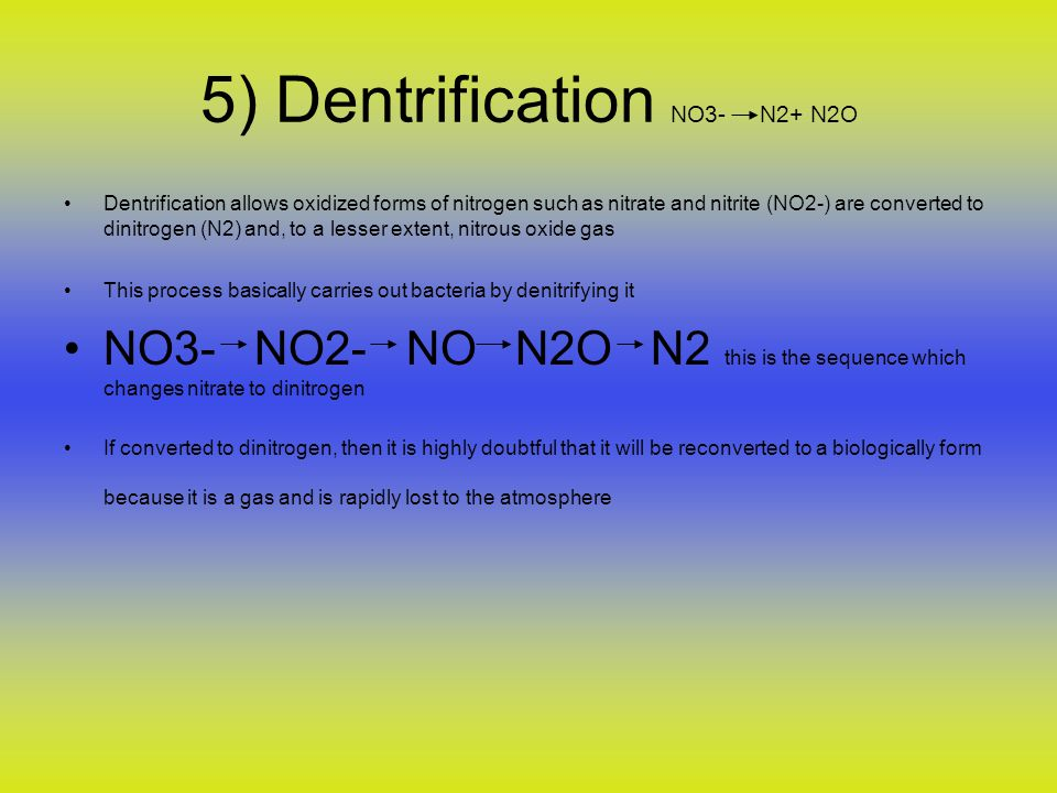 5) Dentrification NO3- N2+ N2O