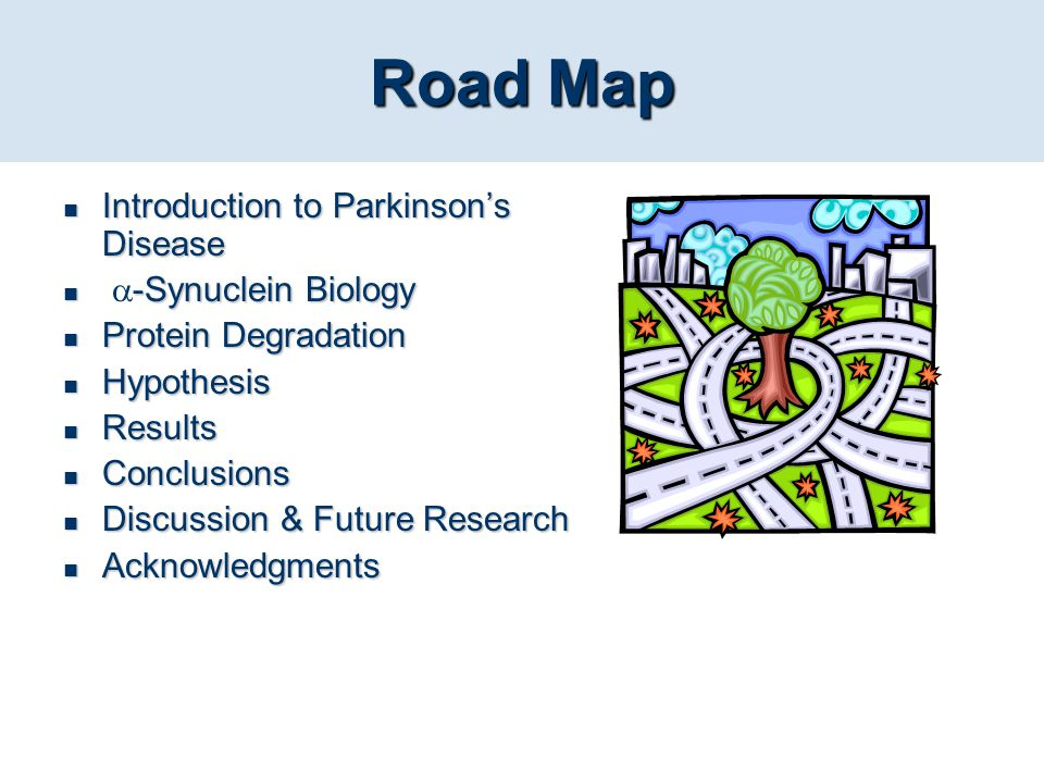 Road Map Introduction to Parkinson's Disease -Synuclein Biology