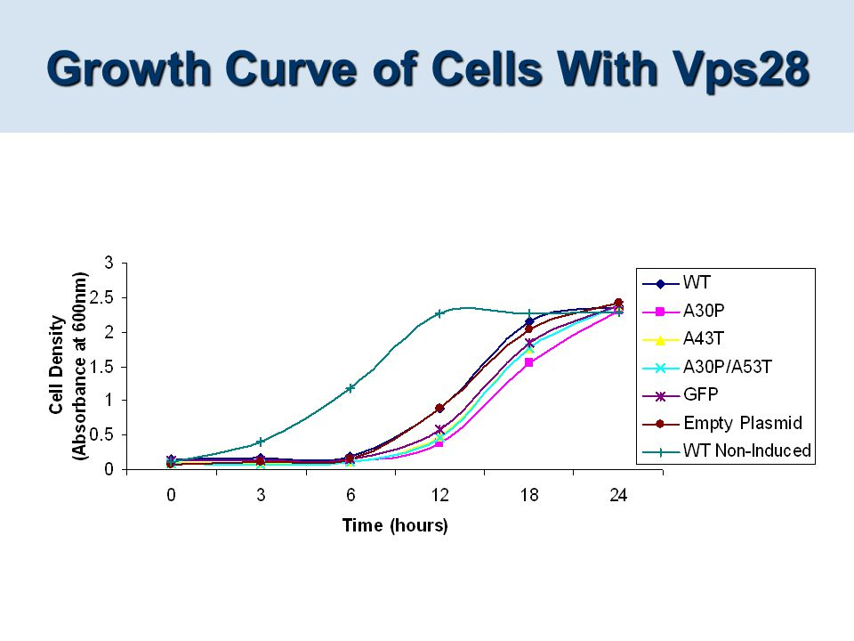 Growth Curve of Cells With Vps28