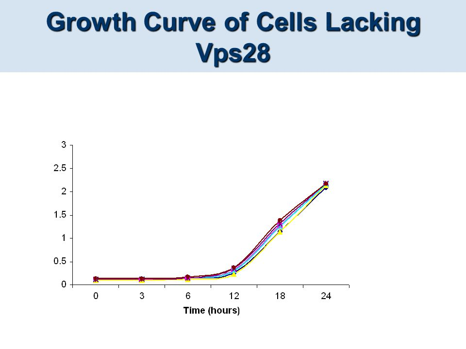 Growth Curve of Cells Lacking Vps28