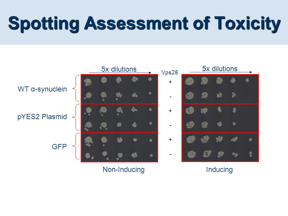 Spotting Assessment of Toxicity