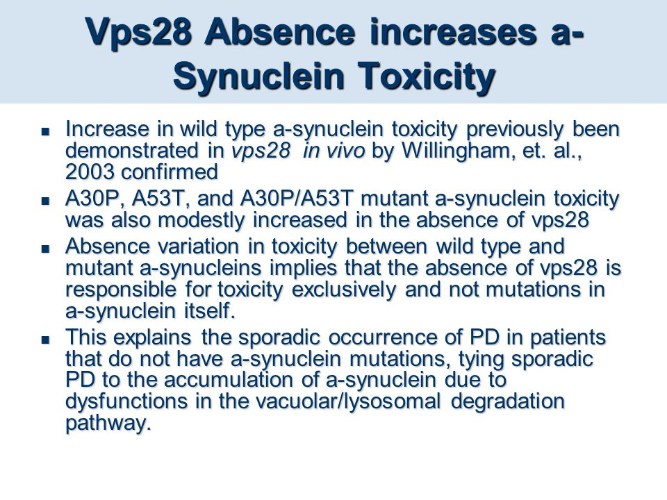 Vps28 Absence increases a-Synuclein Toxicity