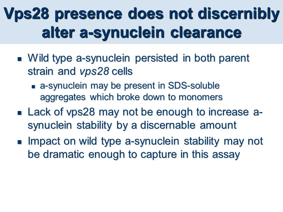 Vps28 presence does not discernibly alter a-synuclein clearance