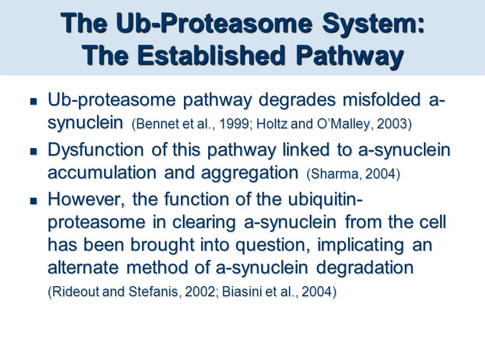 The Ub-Proteasome System: The Established Pathway