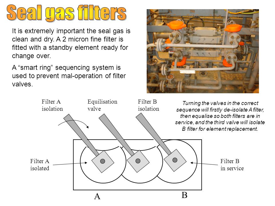 Seal gas filters