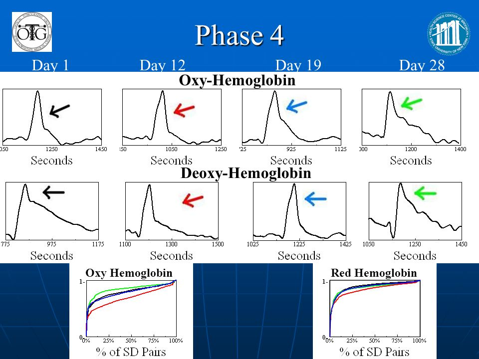 Phase 4 Day 1 Day 12 Day 19 Day 28 Oxy-Hemoglobin Deoxy-Hemoglobin