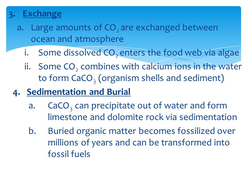 Large amounts of CO2 are exchanged between ocean and atmosphere