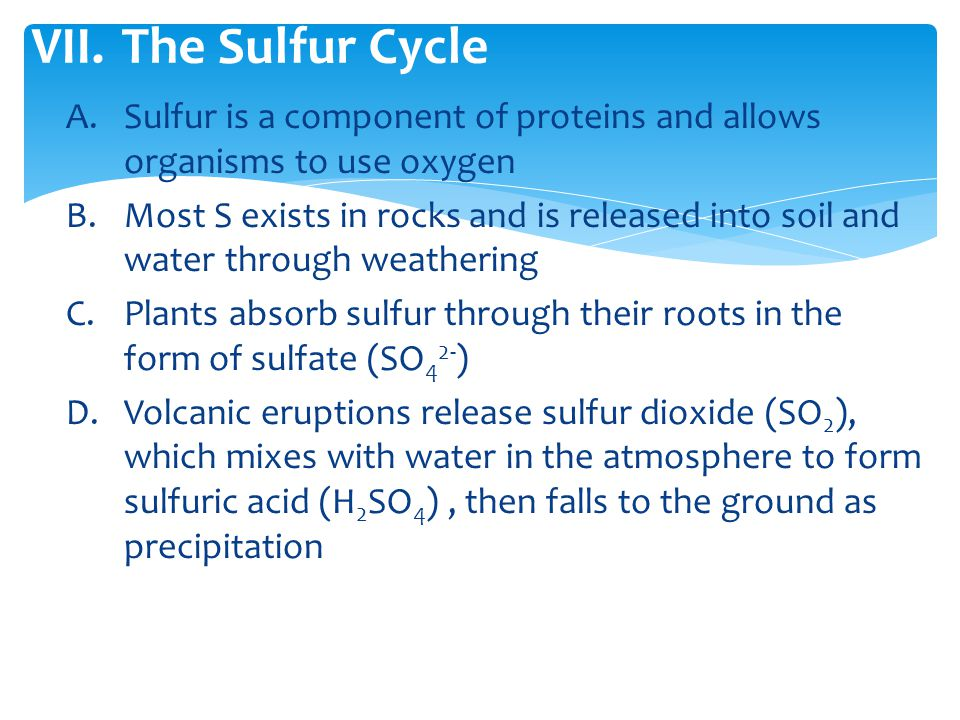 The Sulfur Cycle Sulfur is a component of proteins and allows organisms to use oxygen.