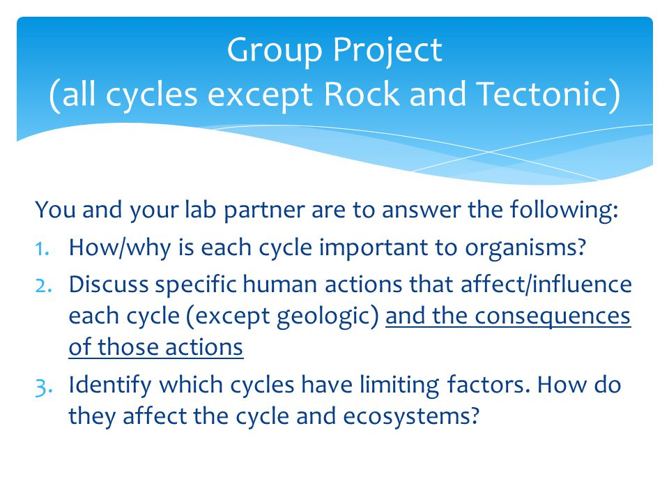 Group Project (all cycles except Rock and Tectonic)