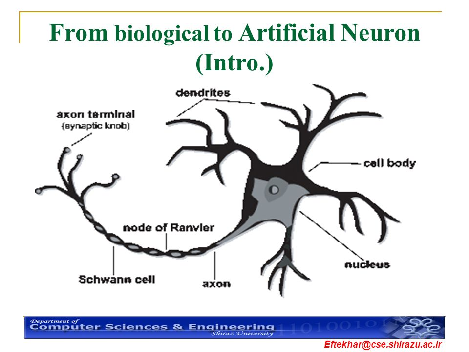 From biological to Artificial Neuron (Intro.)
