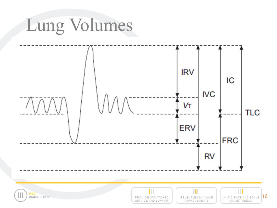 Lung Volumes 16 16