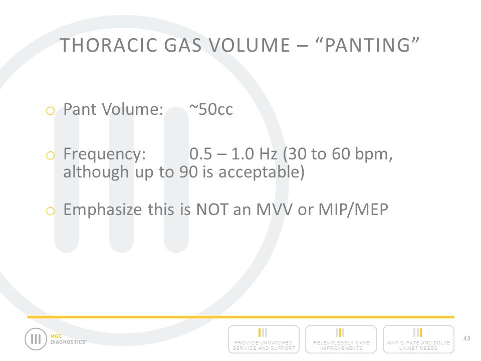 Thoracic Gas Volume – Panting