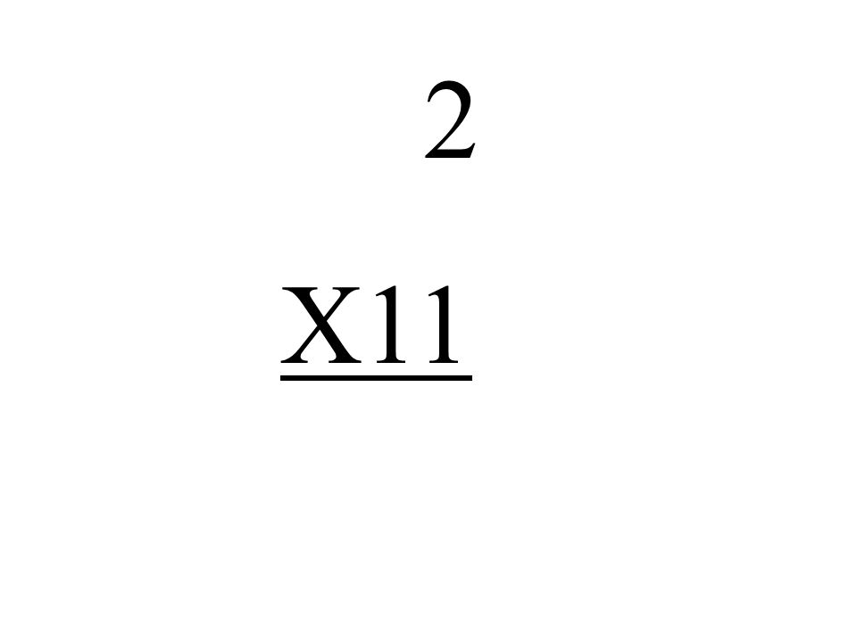 2 X11
