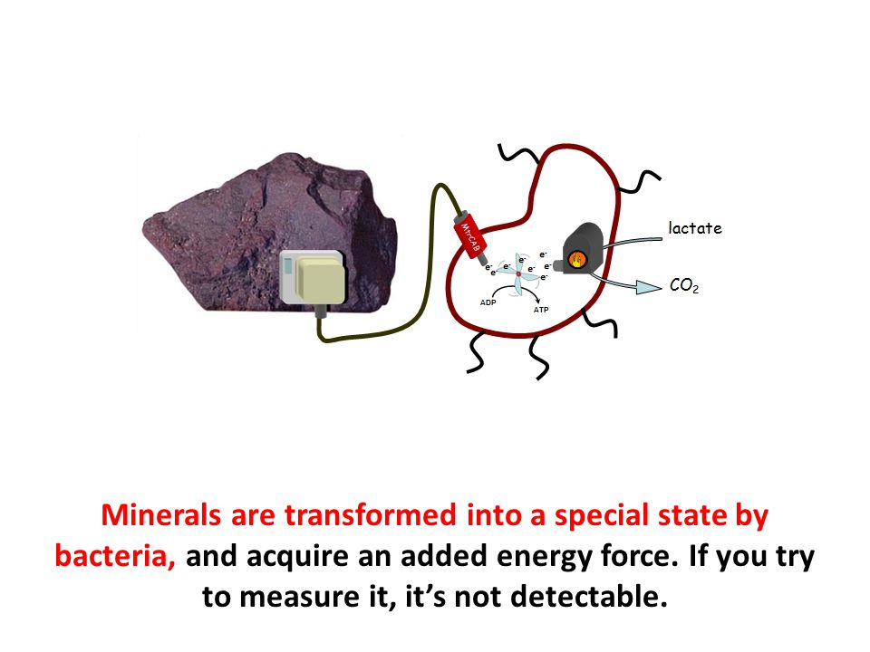 Minerals are transformed into a special state by bacteria, and acquire an added energy force. If you try to measure it, it's not detectable.