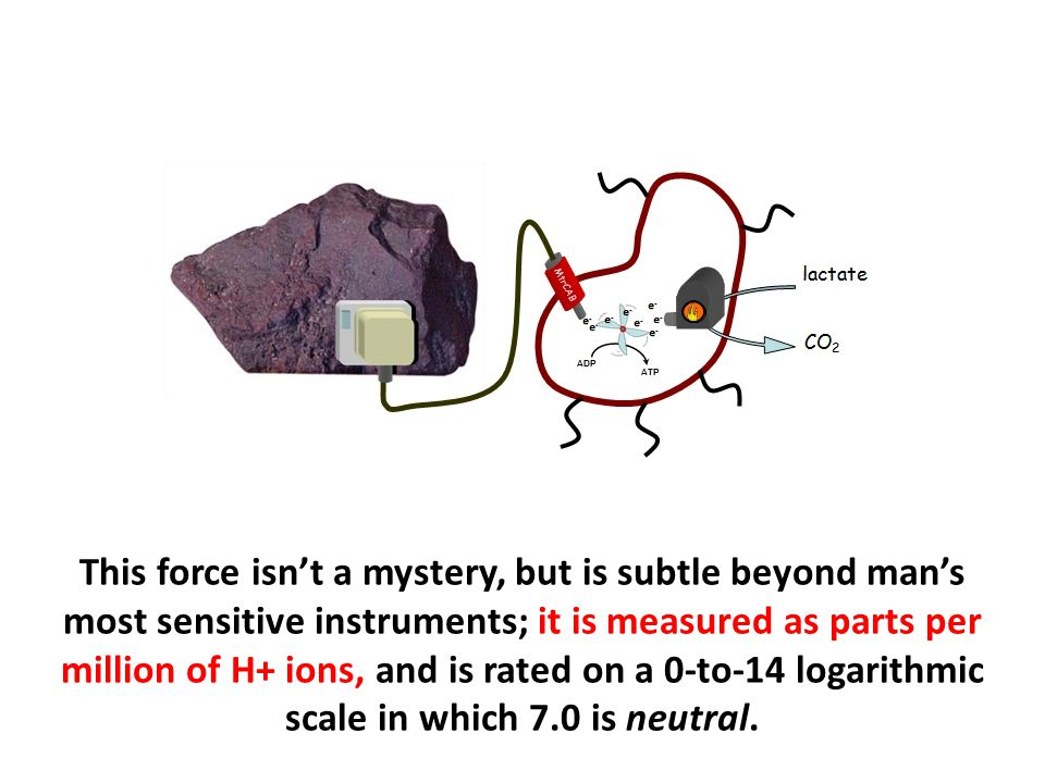 This force isn't a mystery, but is subtle beyond man's most sensitive instruments; it is measured as parts per million of H+ ions, and is rated on a 0-to-14 logarithmic scale in which 7.0 is neutral.