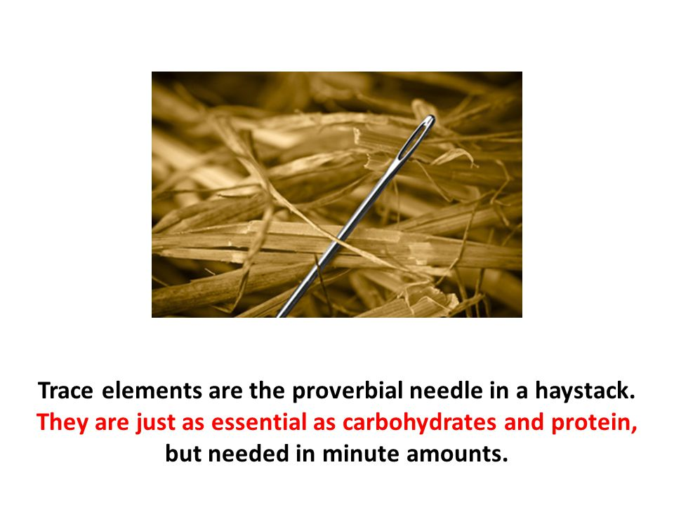 Trace elements are the proverbial needle in a haystack
