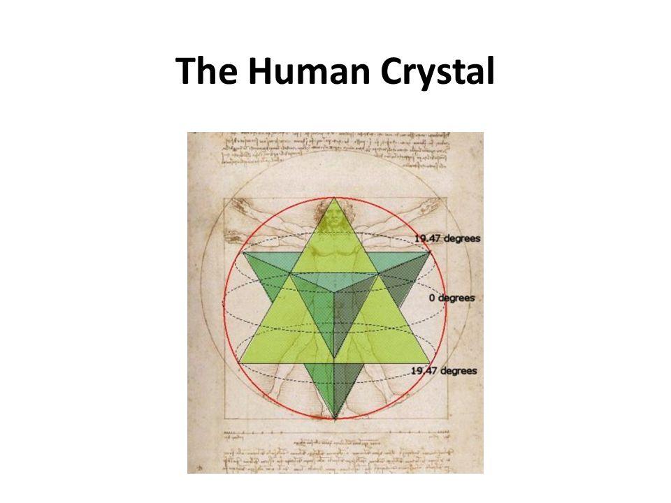 The Human Crystal The Human Crystal