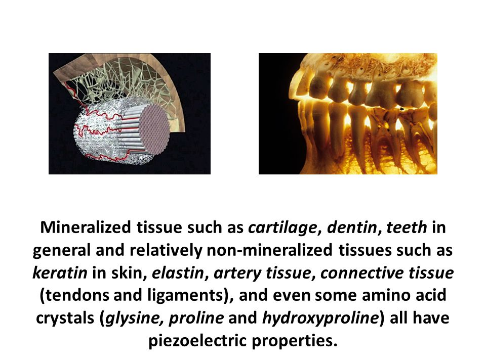 Mineralized tissue such as cartilage, dentin, teeth in general and relatively non-mineralized tissues such as keratin in skin, elastin, artery tissue, connective tissue (tendons and ligaments), and even some amino acid crystals (glysine, proline and hydroxyproline) all have piezoelectric properties.