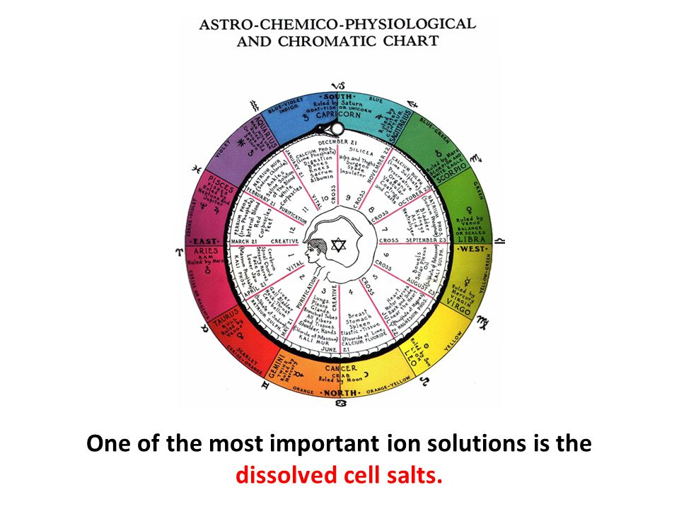 One of the most important ion solutions is the dissolved cell salts.