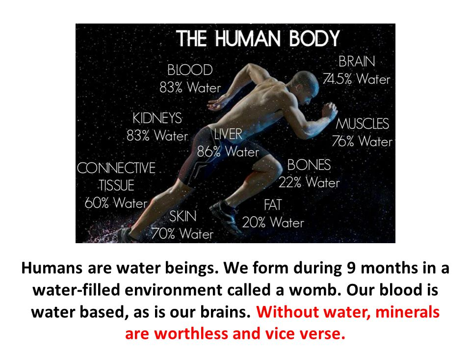 Humans are water beings