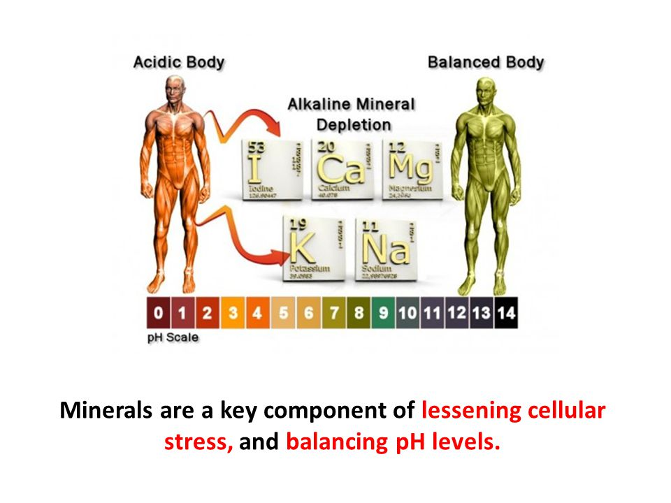 Minerals are a key component of lessening cellular stress, and balancing pH levels.