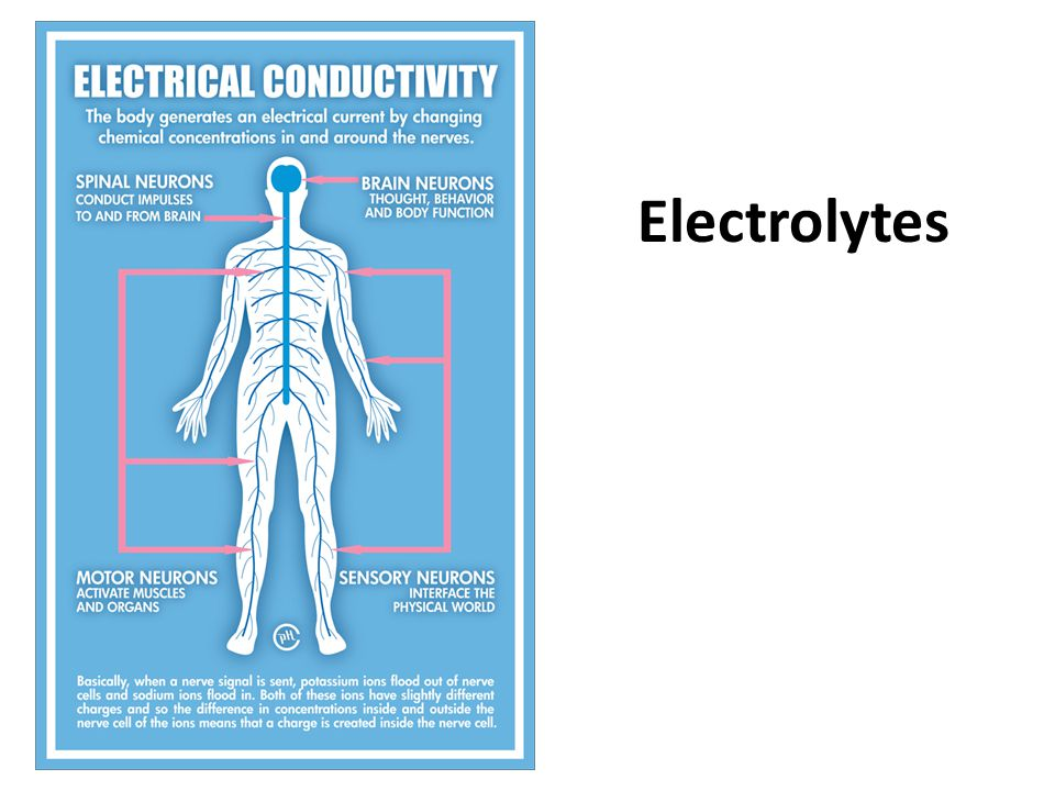Electrolytes Electrolytes