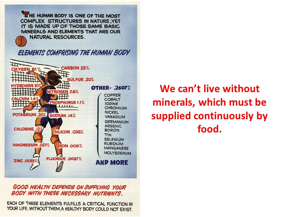 We can't live without minerals, which must be supplied continuously by food.
