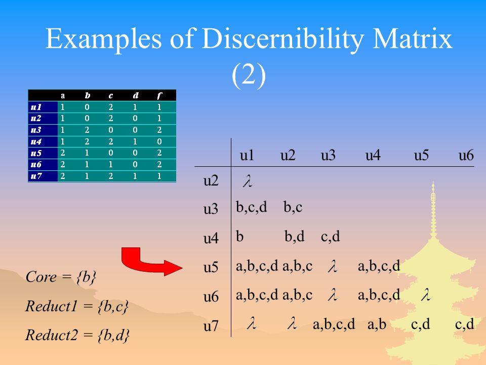Examples of Discernibility Matrix (2)