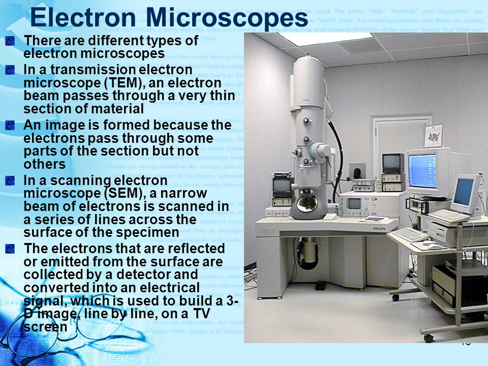 Electron Microscopes There are different types of electron microscopes