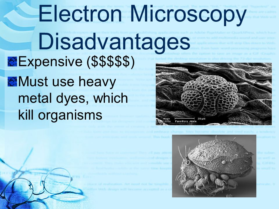 Electron Microscopy Disadvantages