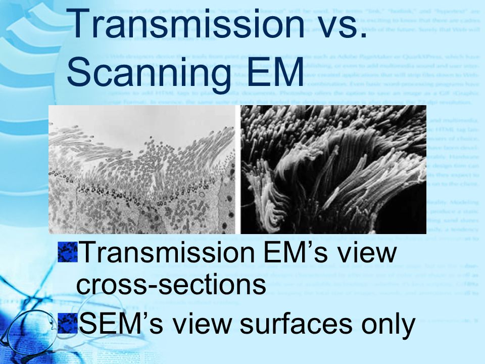 Transmission vs. Scanning EM