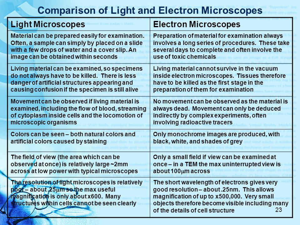 Comparison of Light and Electron Microscopes