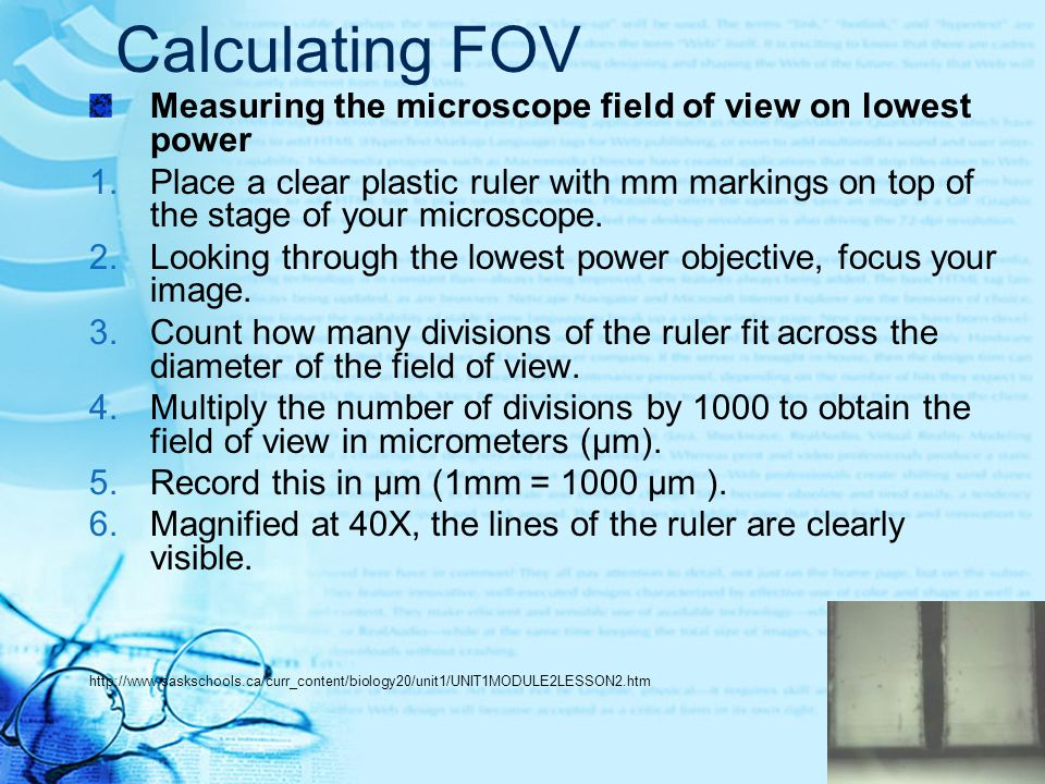 Calculating FOV Measuring the microscope field of view on lowest power