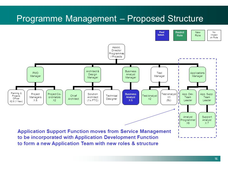 Programme Management – Proposed Structure