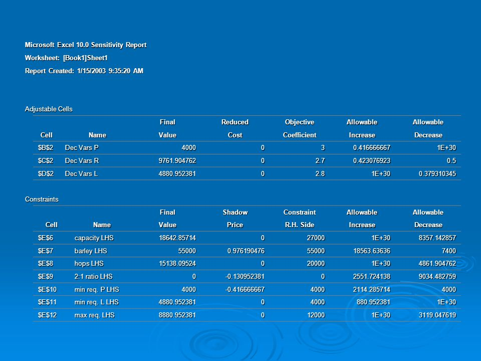 Microsoft Excel 10.0 Sensitivity Report