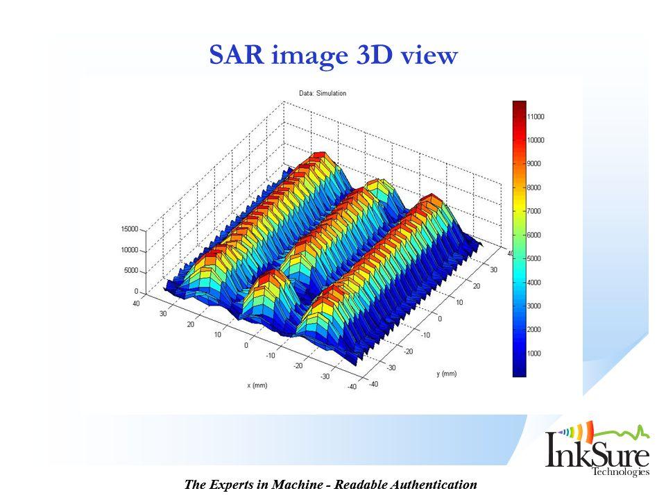 SAR image 3D view 13