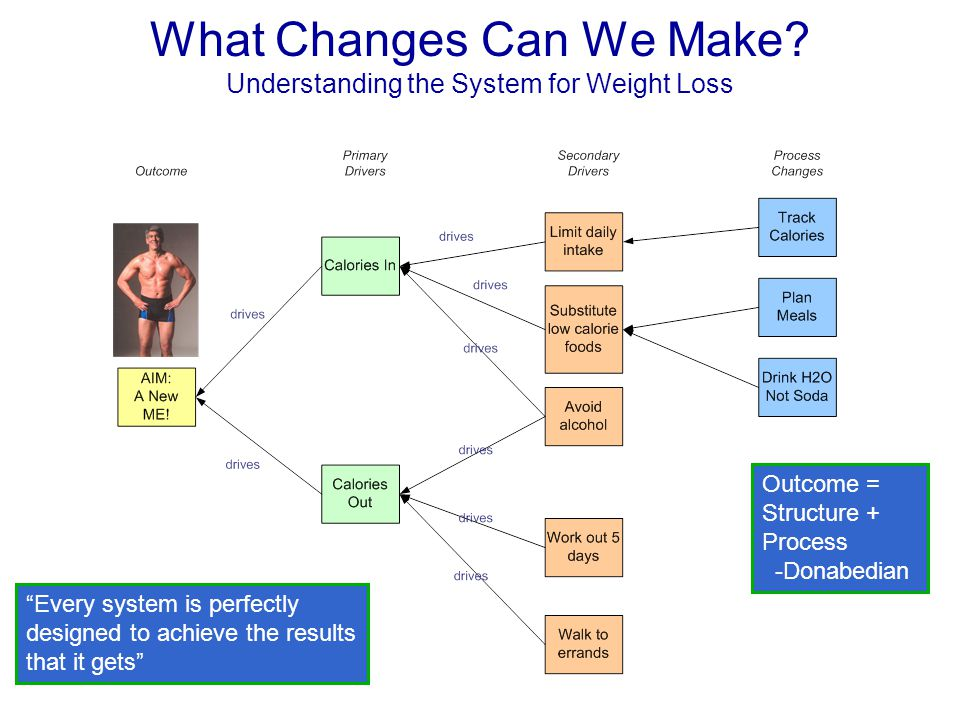 What Changes Can We Make Understanding the System for Weight Loss
