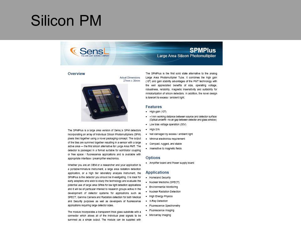 Silicon PM