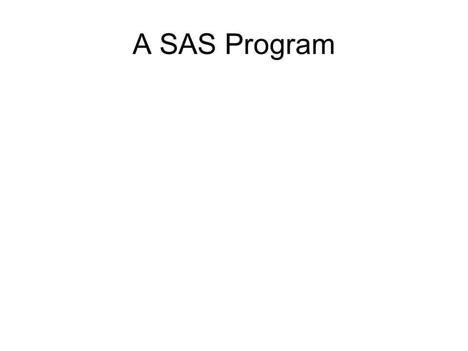 A SAS Program