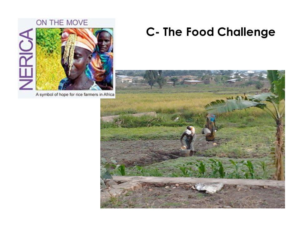 C- The Food Challenge