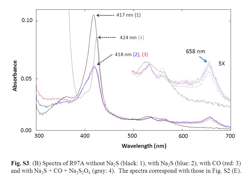 Wavelength (nm) Absorbance 658 nm
