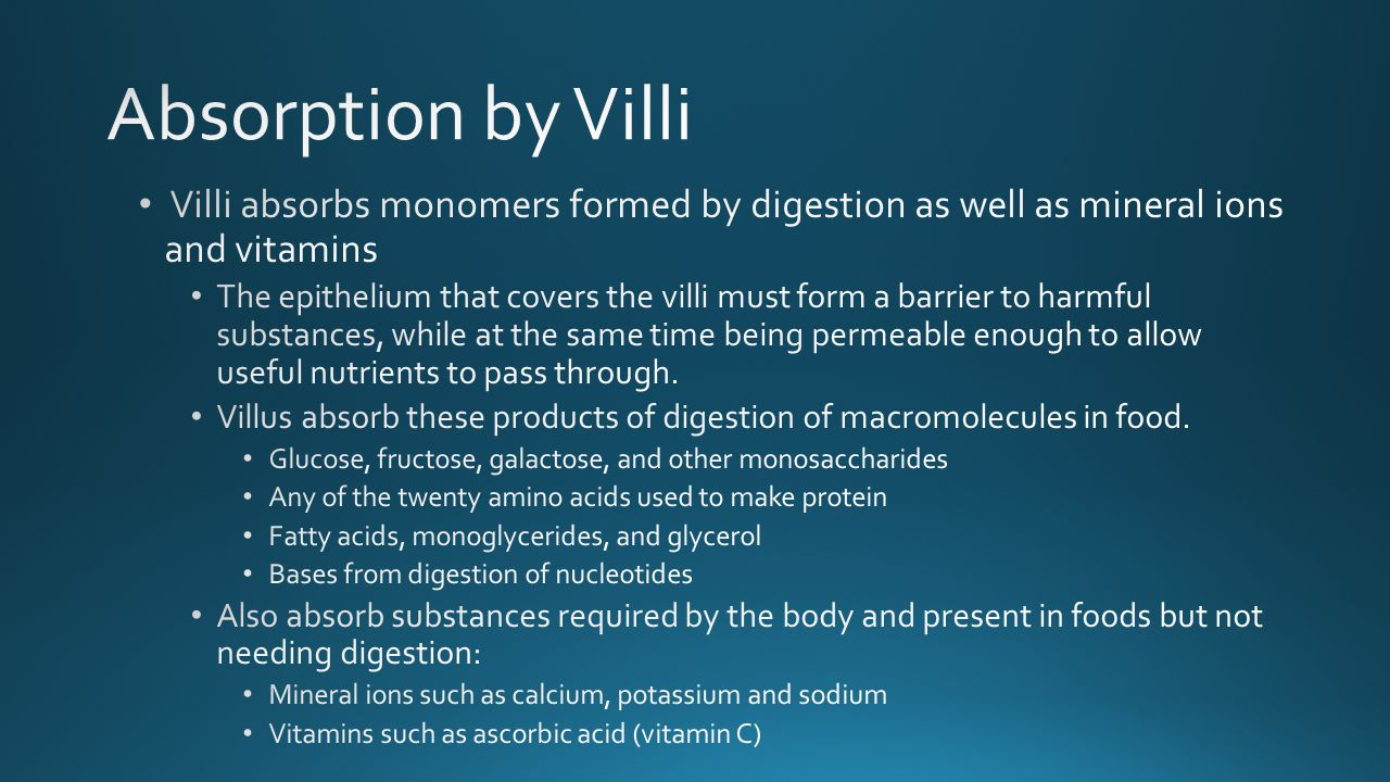 Absorption by Villi Villi absorbs monomers formed by digestion as well as mineral ions and vitamins.