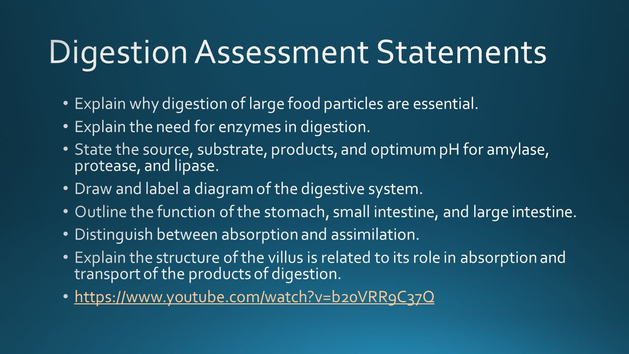 Digestion Assessment Statements