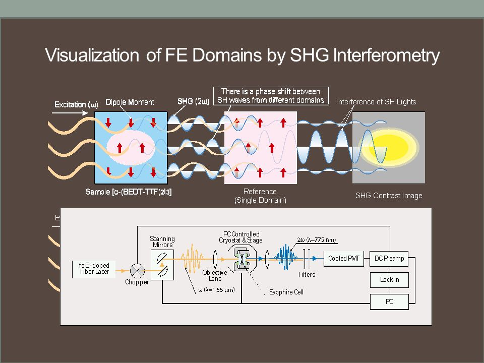 Visualization of FE Domains by SHG Interferometry